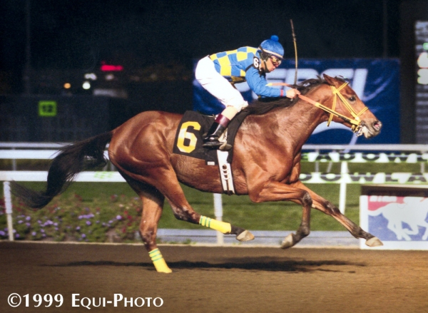 Wizard winning at the Meadowlands in 1999
